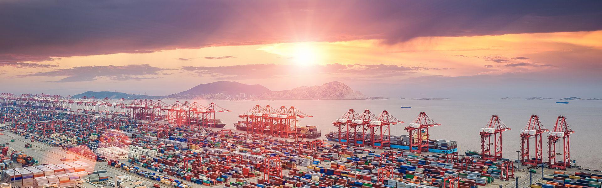 深圳海冠国际物流有限公司